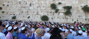 Israel2014-143